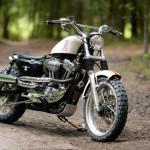 Harley Davidson XL 1200C Scrambler by Greg Hageman