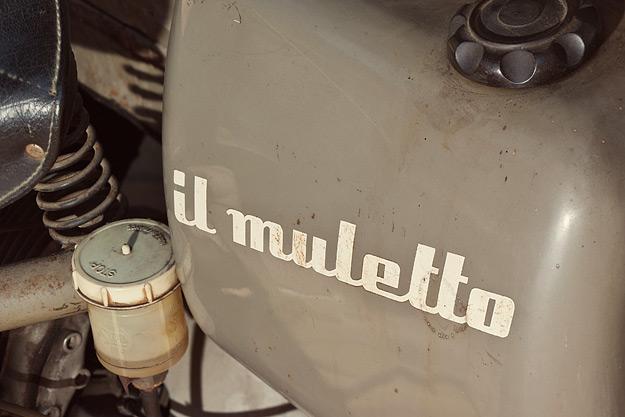 ducati-muletto-3