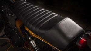 Harley-Davidson Sportster_Stay-Gold_Onorio-Moto (5)